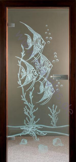 Design Glastür Veloni 142